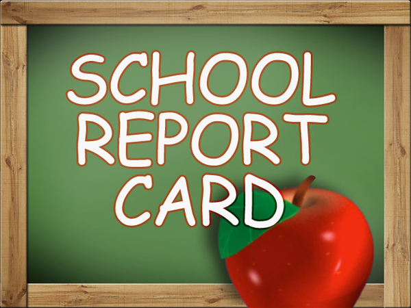 Dawnville Annual School Report Card