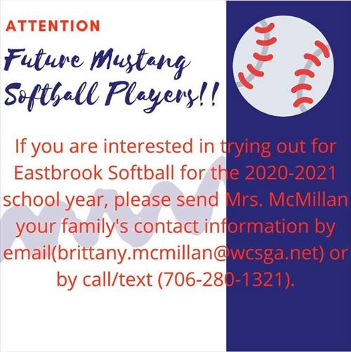 Softball Information