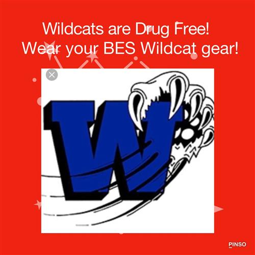 Wildcats are Drug Free