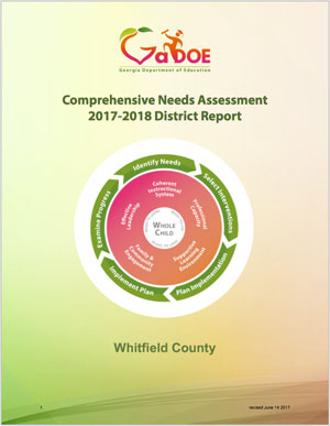 Comprehensive Needs Assessment Report Cover